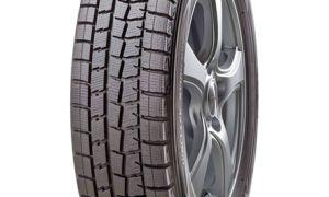 Обзор зимней резины Dunlop WINTER MAXX WM01